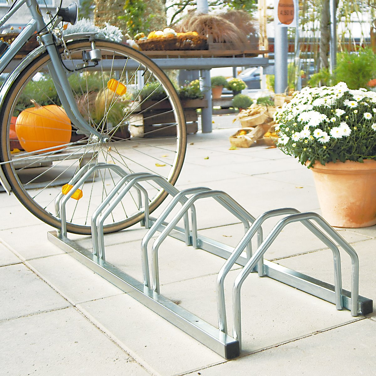 Economy Cycle Rack