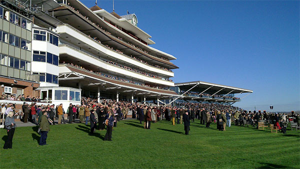 Street Furniture Direct Design & Supply Seating to Newbury Racecourse